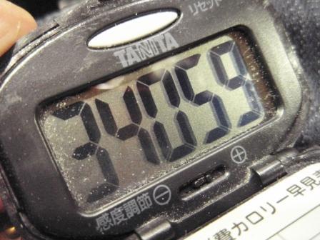 P3110029w